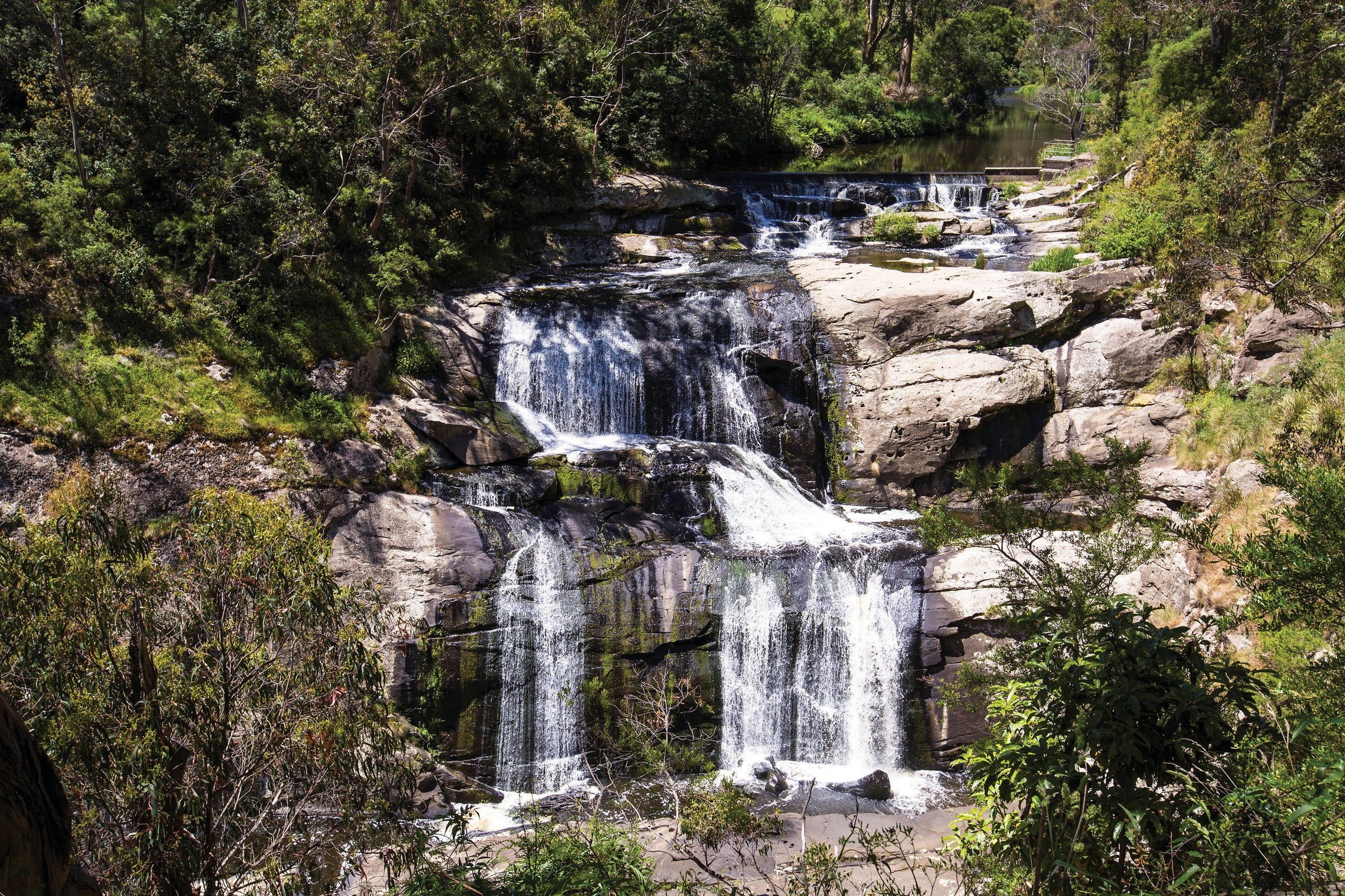 Agnes Falls Scenic Reserve - Attractions Sydney