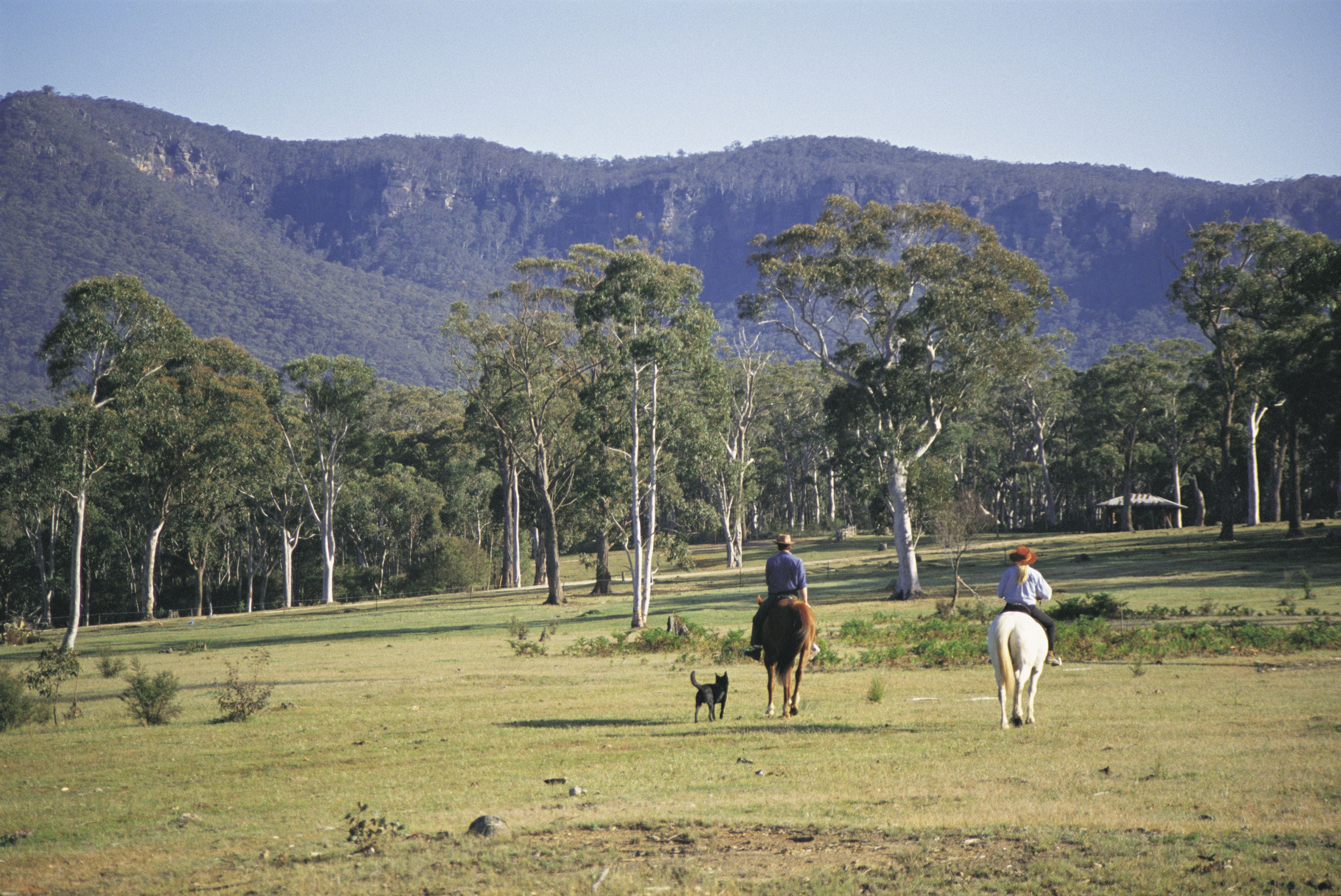Megalong Valley - Attractions Sydney