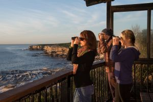 Sutherland Shire - Attractions Sydney