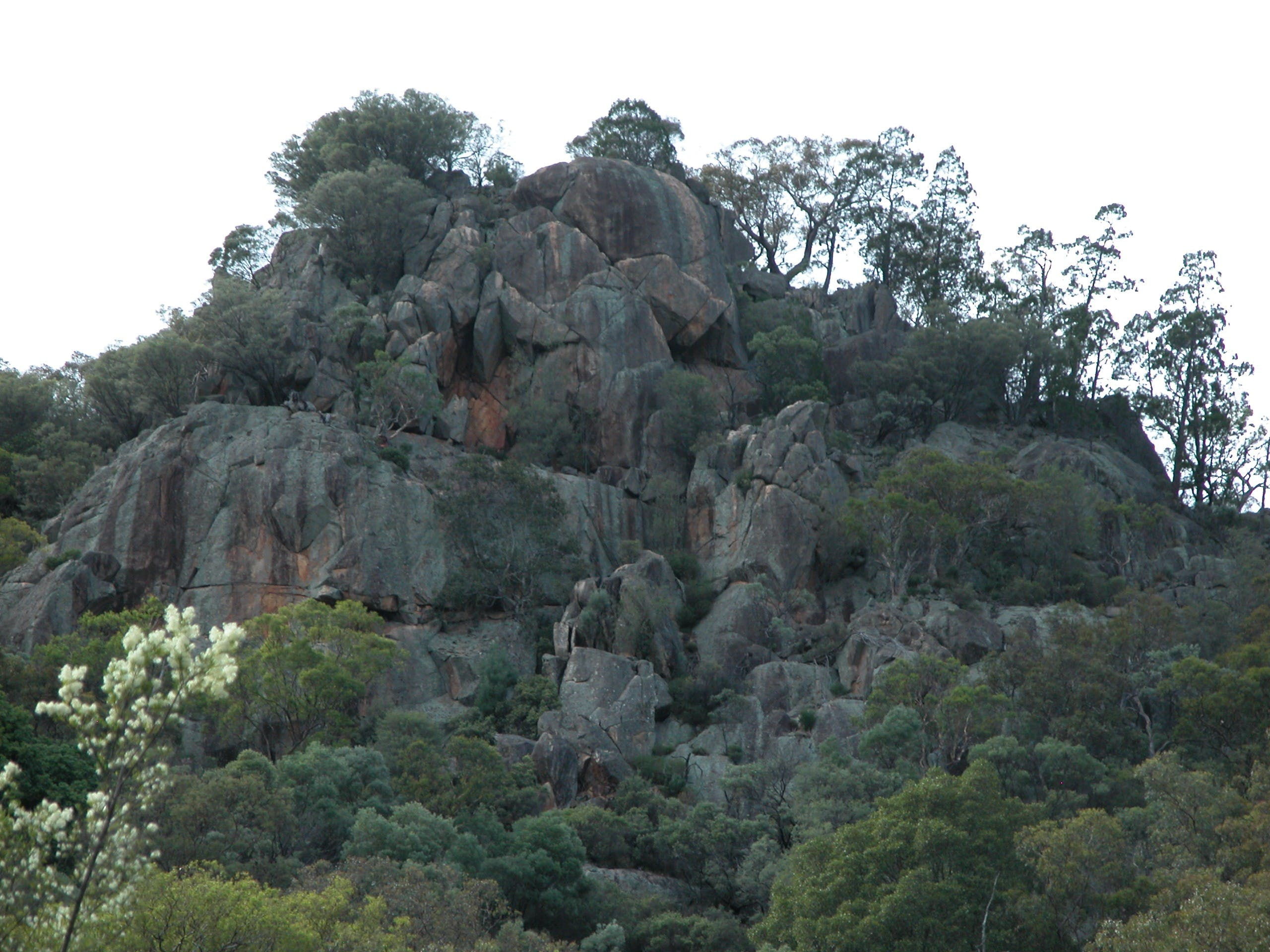 Mount Yarrowyck Nature Reserve - Attractions Sydney