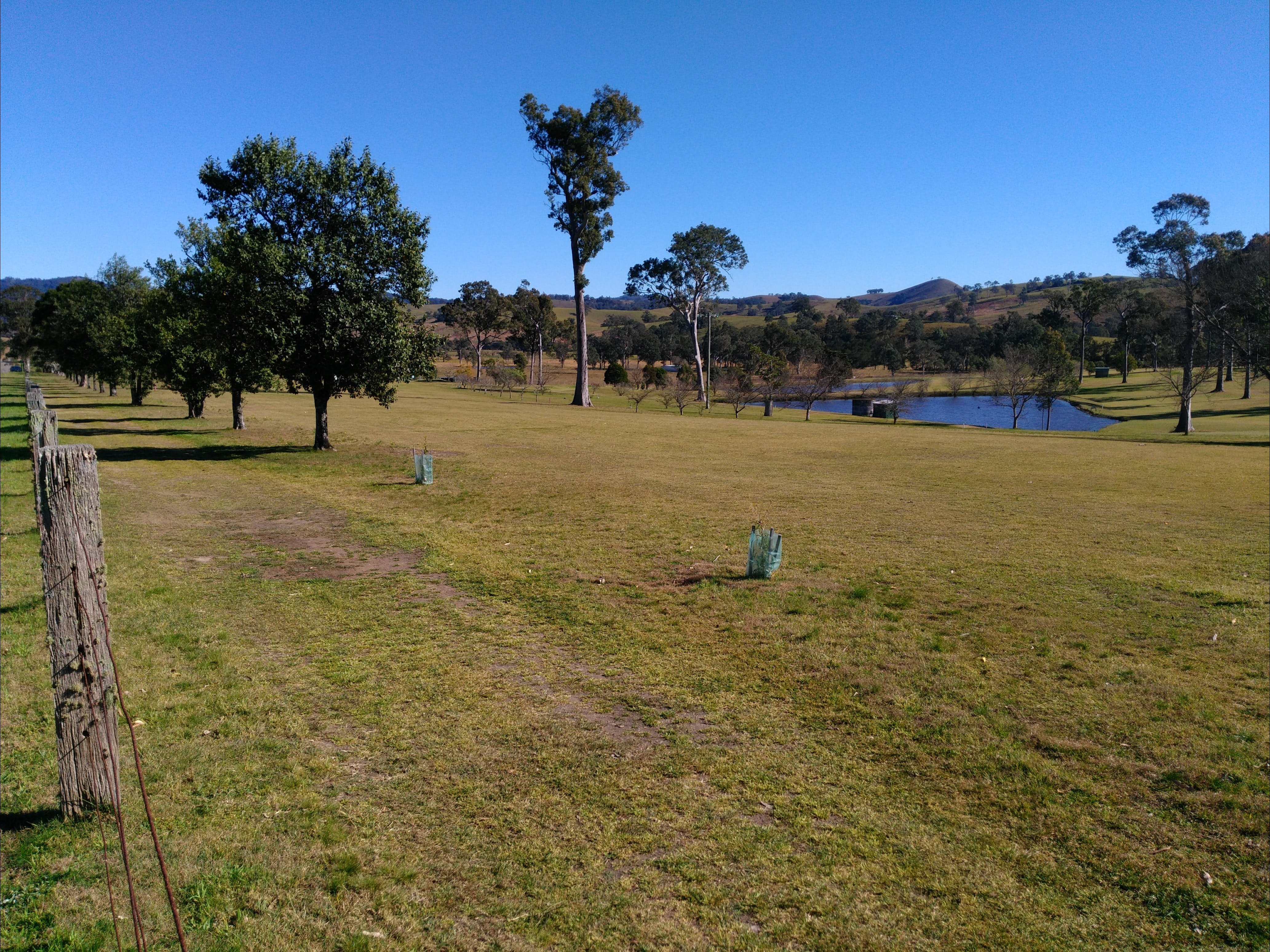 Dungog and District Golf Club - Attractions Sydney