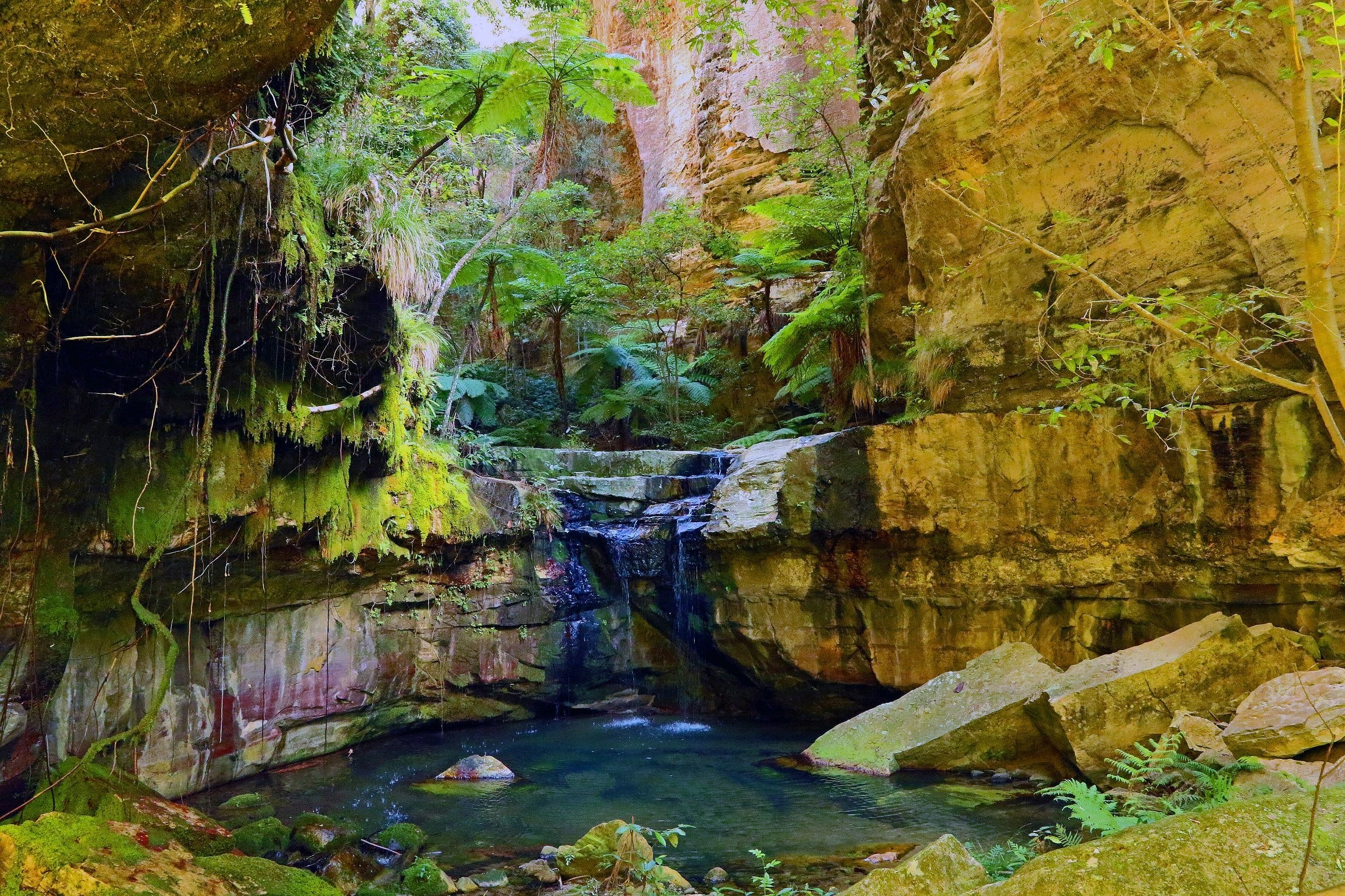 Glimpse of the Outback 5 Day Tour - Roma and Surrounds - Attractions Sydney