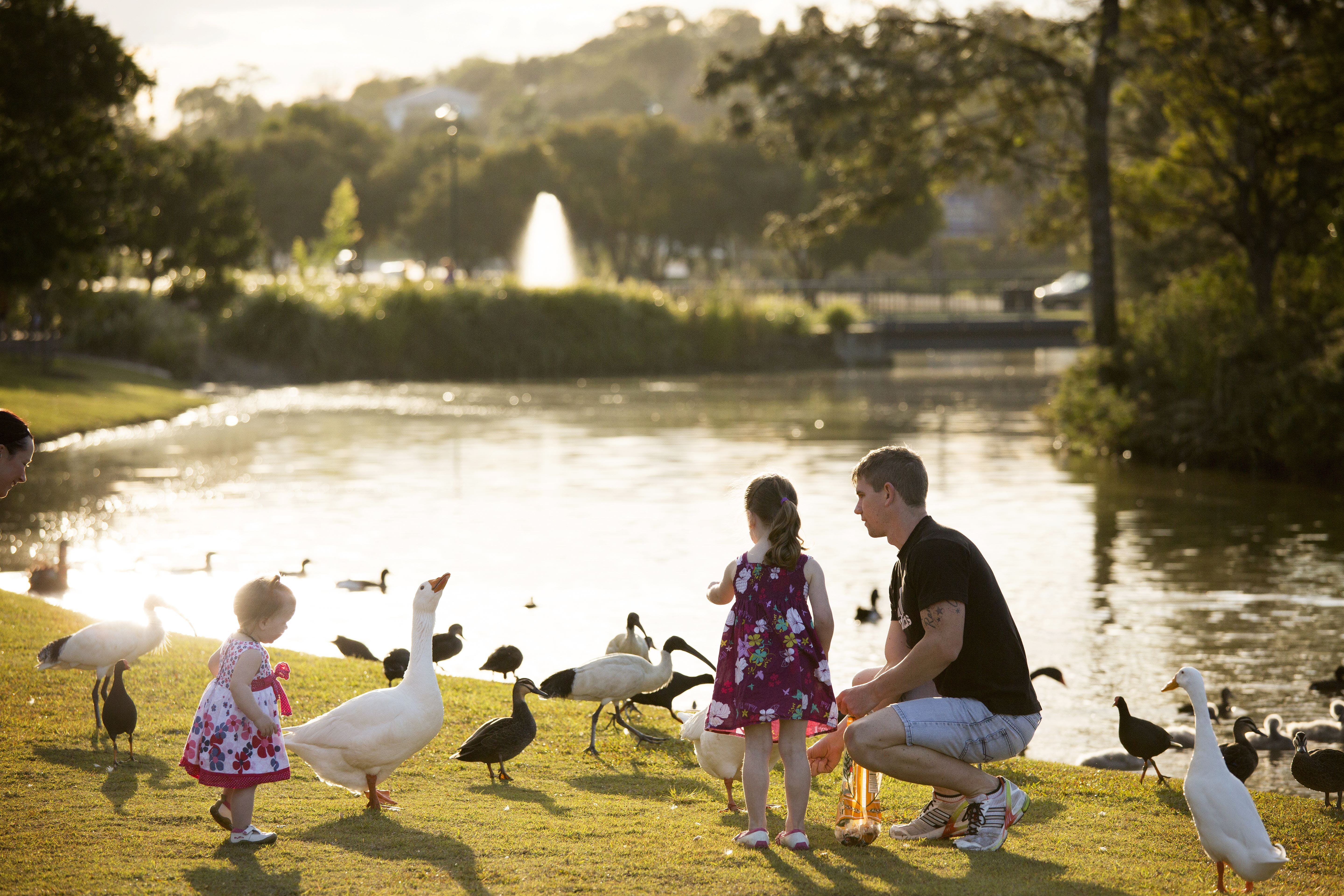 Lake Alford Recreational Park - Attractions Sydney