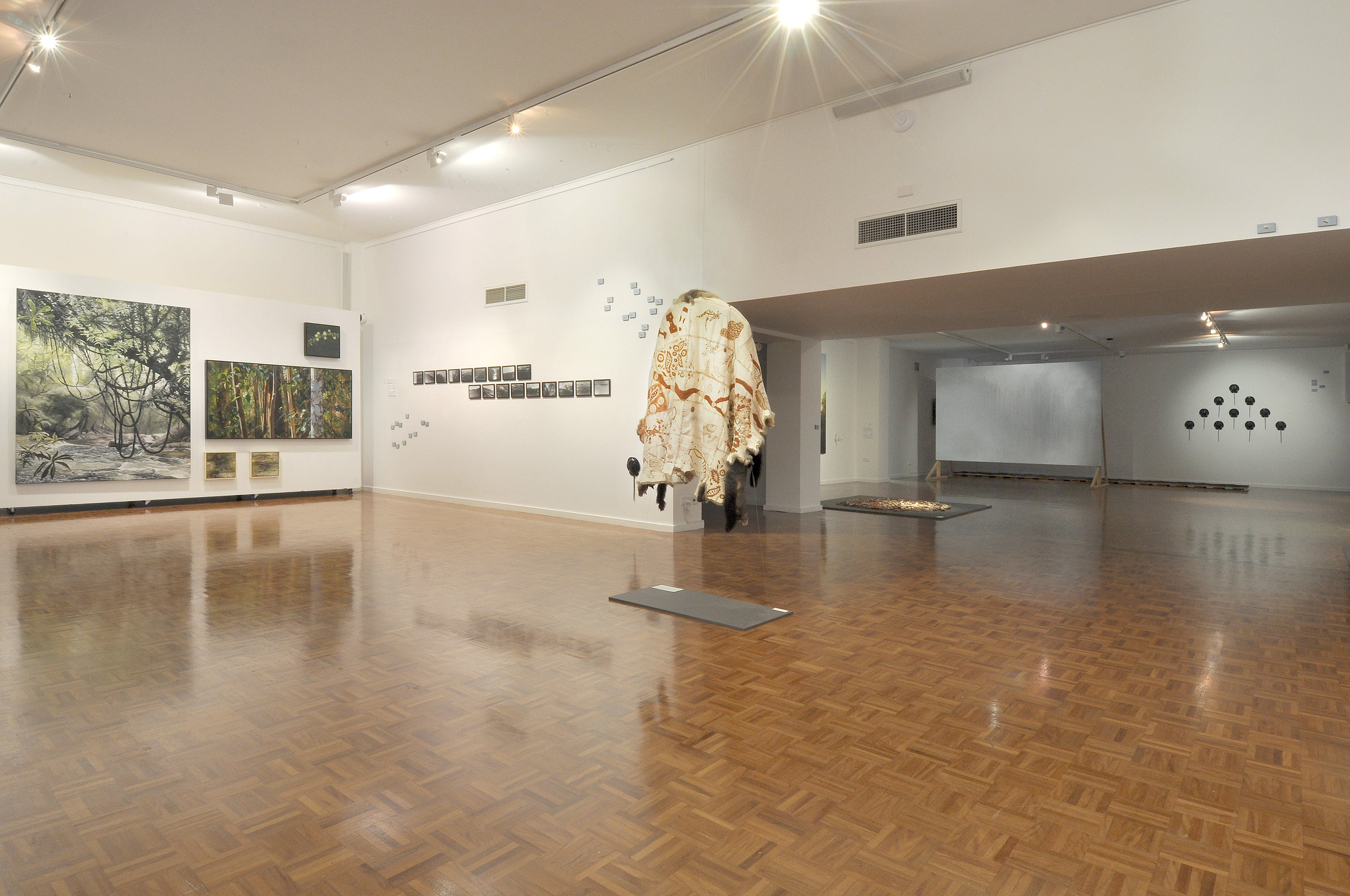 Noosa Regional Gallery - Attractions Sydney