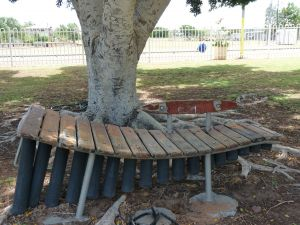 Barcaldine Musical Instruments - Attractions Sydney