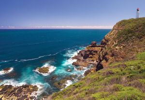 Bushrangers Bay Walking Track - Attractions Sydney
