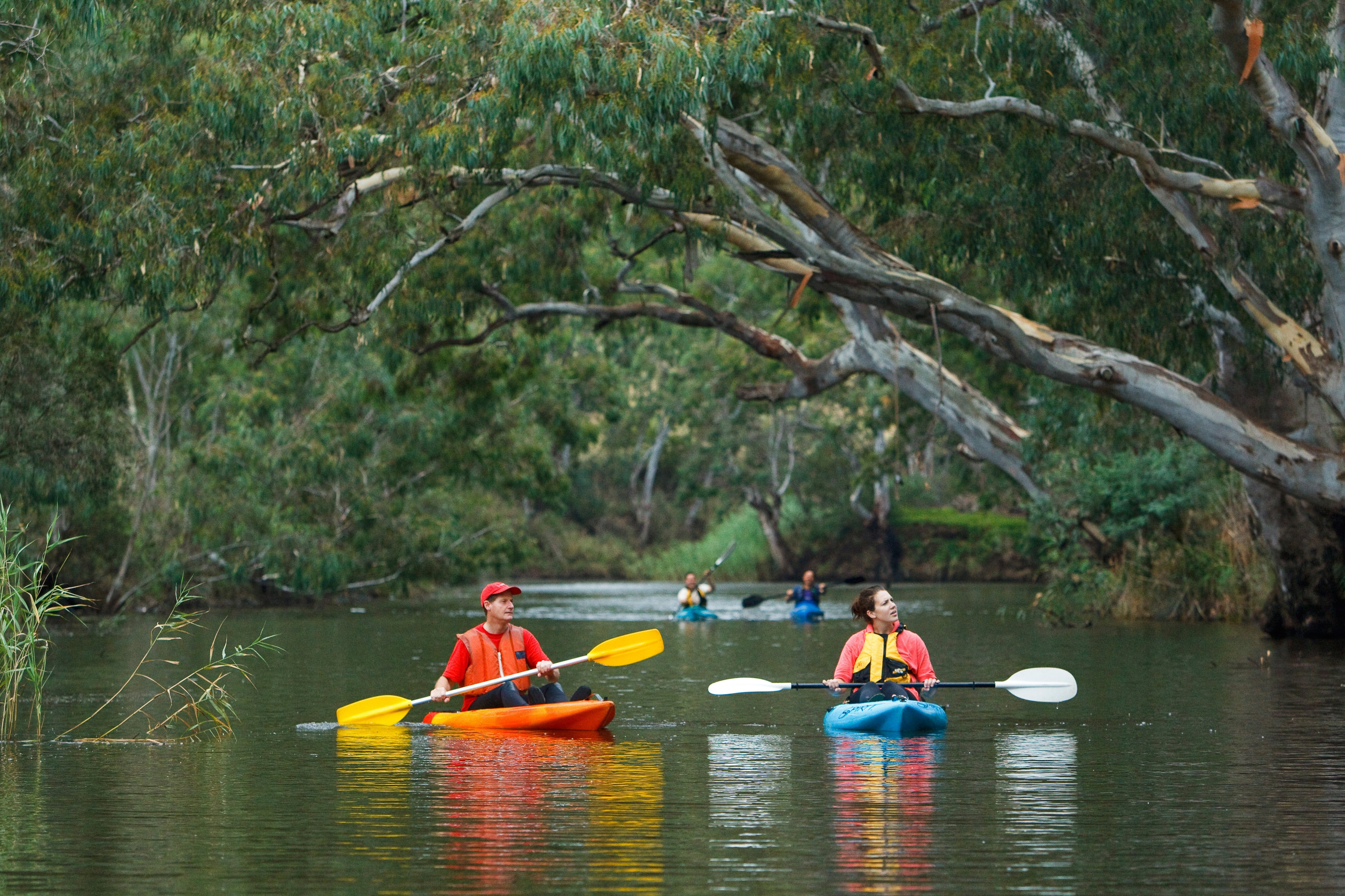 Maribyrnong River - Attractions Sydney