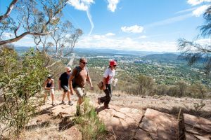 Mount Ainslie Lookout - Attractions Sydney