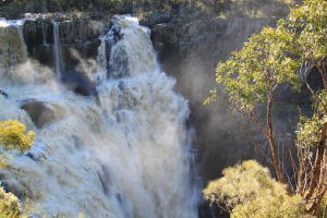 Walcha - Attractions Sydney