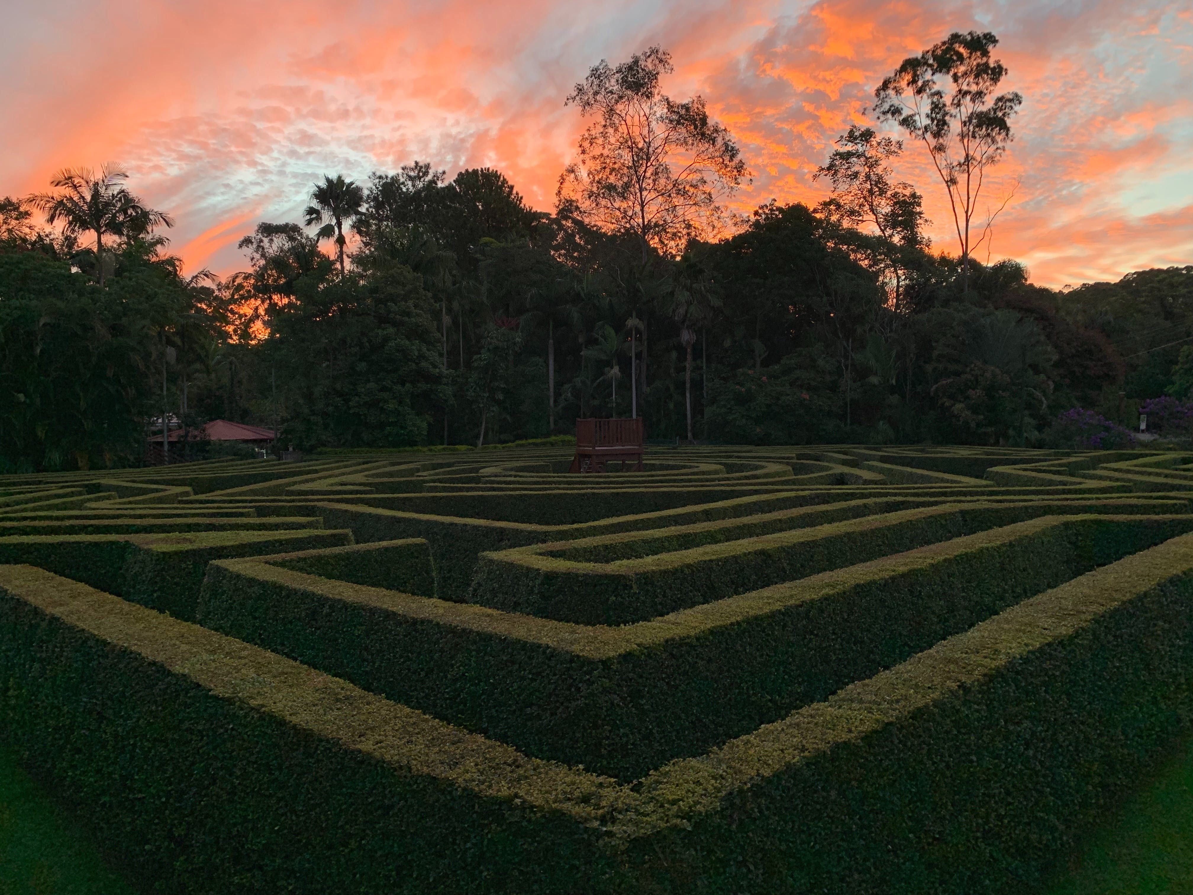 Bellingham Maze - Attractions Sydney