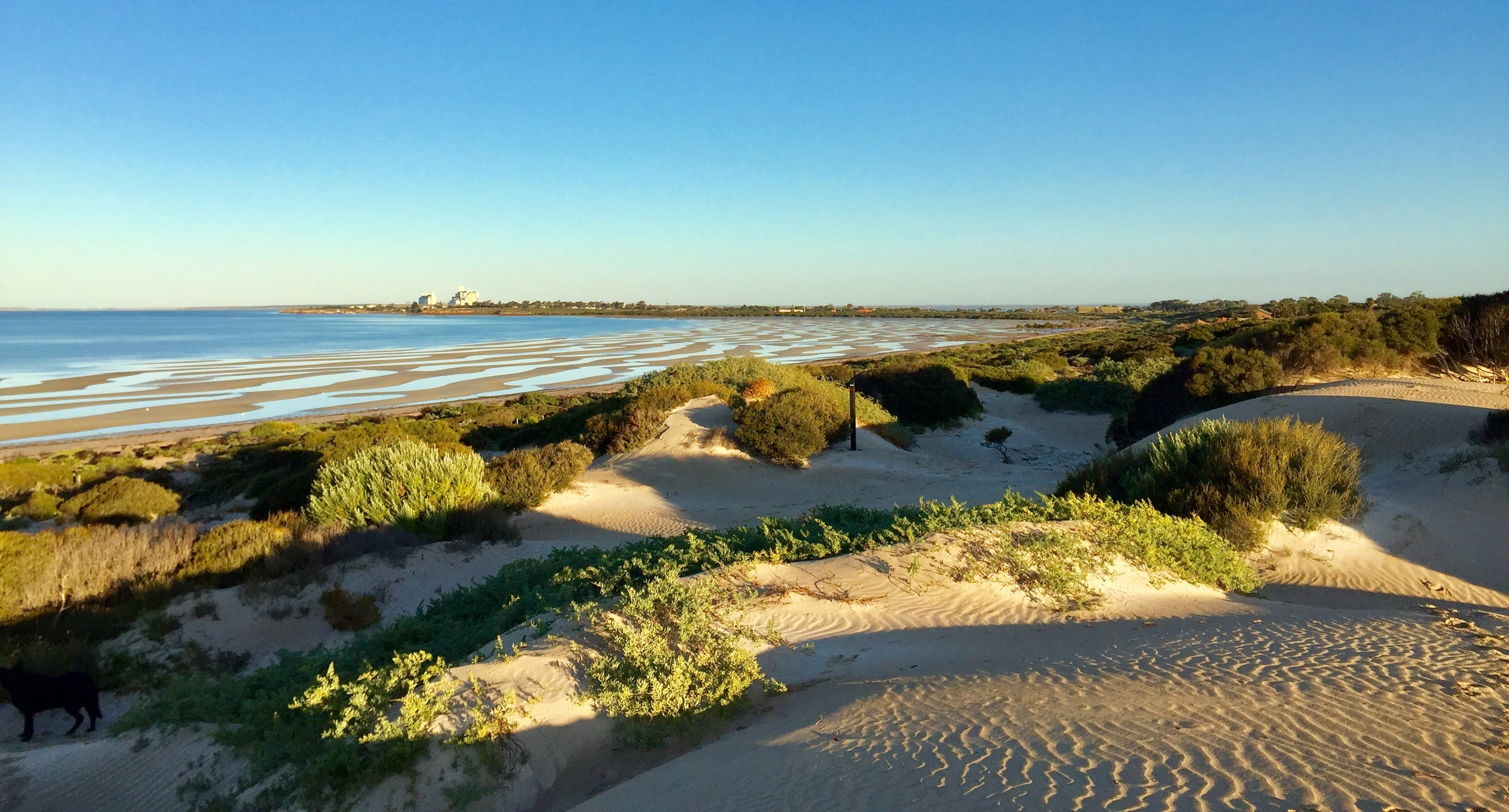 Shelly Beach Dune Walk Trail - Attractions Sydney