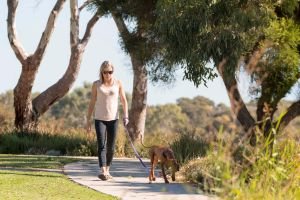 Meningie Walking and Cycling Trails - Attractions Sydney