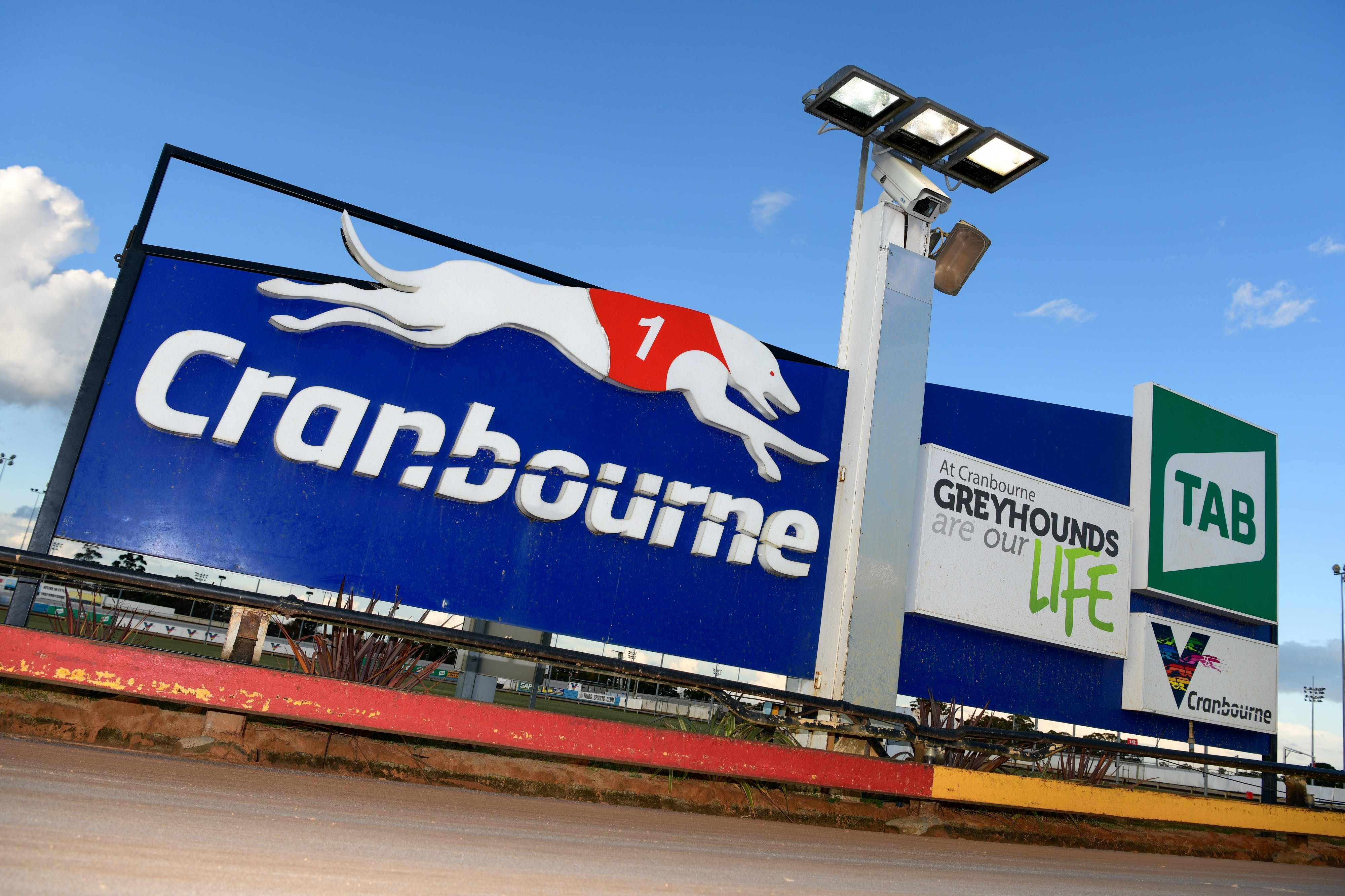 Cranbourne Greyhound Racing Club - Attractions Sydney