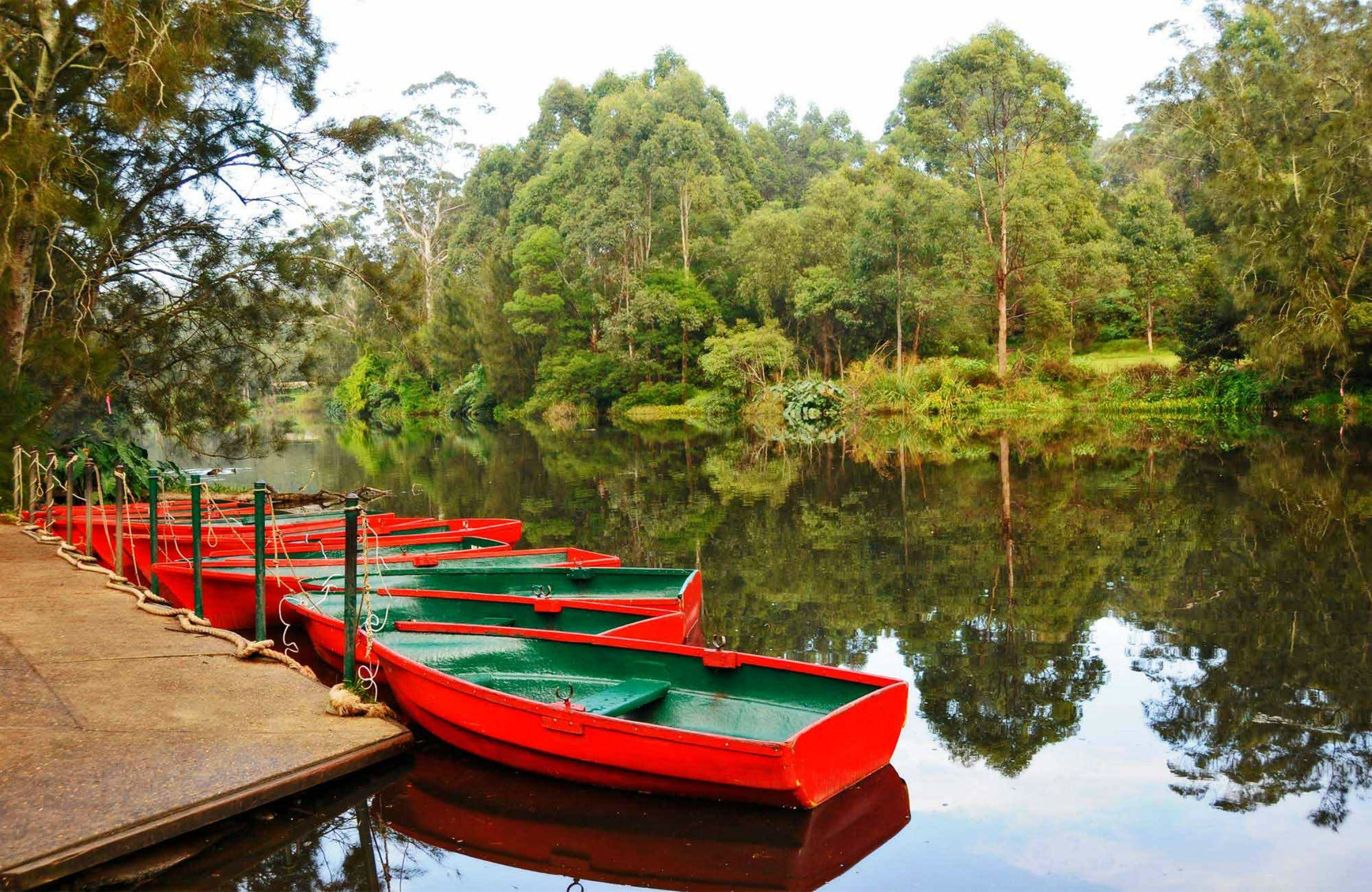 Lane Cove National Park - Attractions Sydney