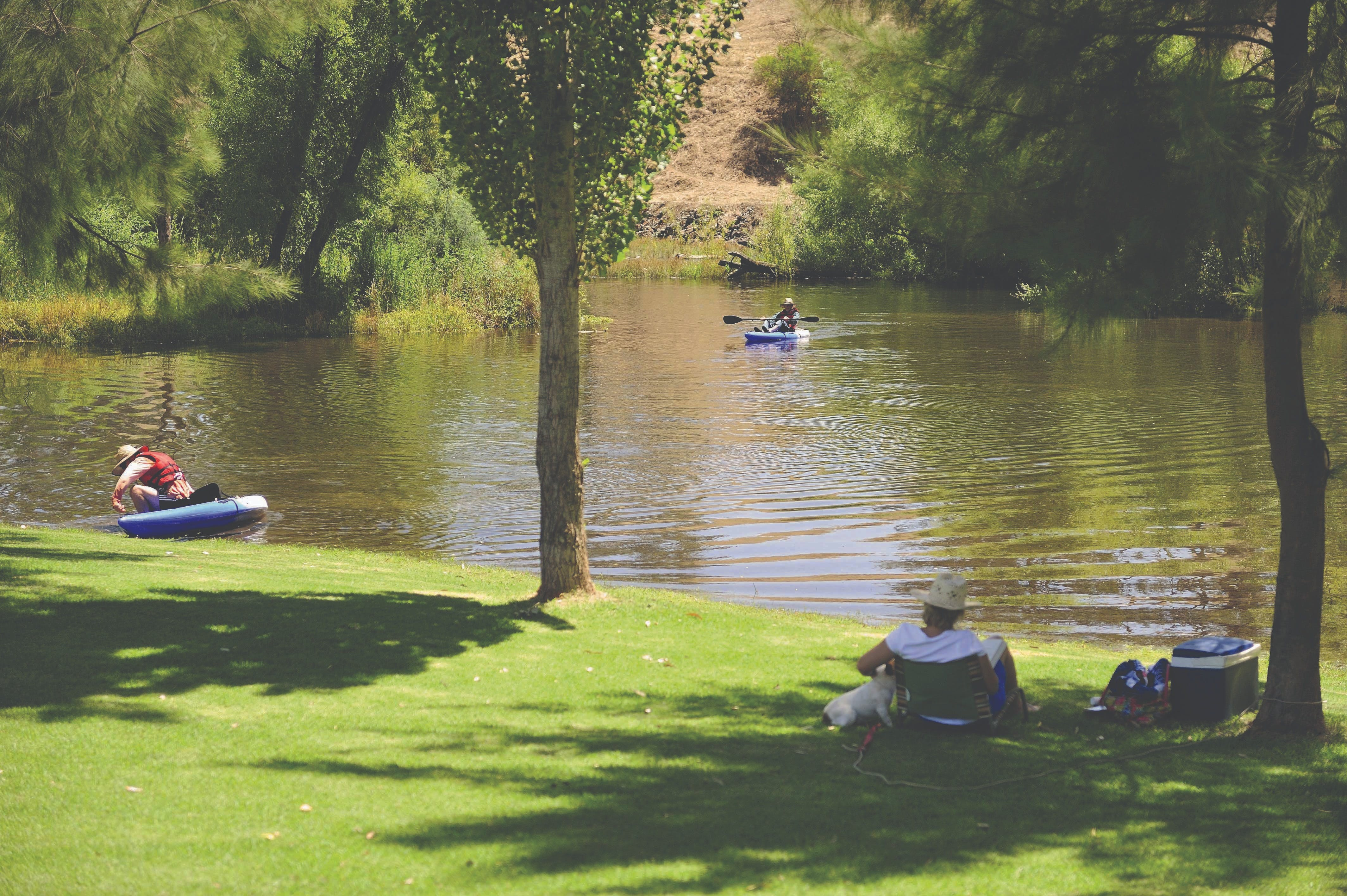 The Lions Junction Park - Tumut - Attractions Sydney