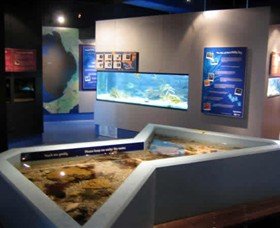Marine and Freshwater Discovery Centre - Attractions Sydney