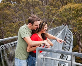Valley of the Giants Tree Top Walk - Attractions Sydney