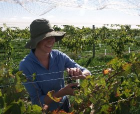 Kingsdale Wines - Attractions Sydney