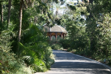 Royal Botanic Gardens Victoria - Attractions Sydney